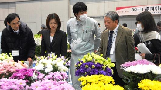 20170217静岡県花の展覧会.jpg