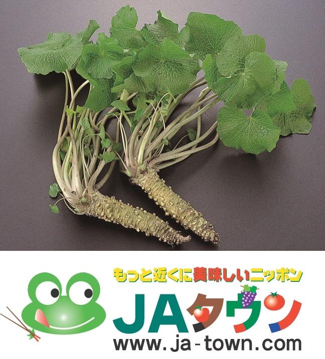 jatown_wasabi.jpg